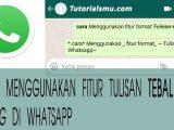 Cara-menggunakan-fitur-format-text-di-whatsapp-tebal,-miring